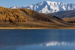 Otoño de la nieve de la reflexión de las montañas del lago Imagen de archivo libre de regalías