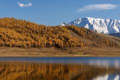 Otoño de la nieve de la reflexión de las montañas del lago Fotografía de archivo libre de regalías