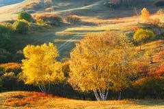 Otoño de la presa en Inner Mongolia Imagen de archivo