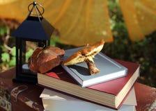 Otoño de la seta en libros y una maleta vieja en el bosque del otoño Imágenes de archivo libres de regalías