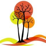 Otoño de los árboles Fotografía de archivo libre de regalías