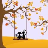 Otoño de los gatos de los amantes Foto de archivo libre de regalías
