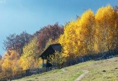 Otoño de oro en montaña Imagen de archivo