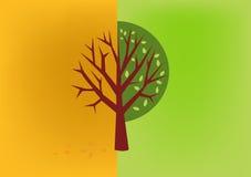 Otoño del árbol, vector del icono de la primavera Imagen de archivo