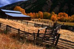 Otoño del granero y de los álamos tembloses Fotografía de archivo