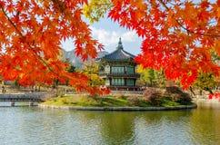 Otoño del palacio de Gyeongbokgung en Seul, Corea Foto de archivo