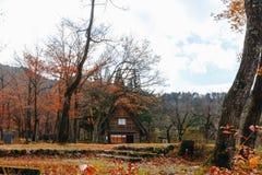 Otoño del pueblo de Shirakawa a finales de noviembre a la estación del invierno Foto de archivo