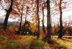 Otoño del pueblo de Shirakawa a finales de noviembre a la estación del invierno Imágenes de archivo libres de regalías