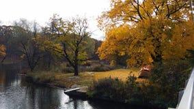 Otoño del río de la naturaleza Imágenes de archivo libres de regalías