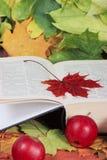 Otoño, el libro, manzanas Foto de archivo