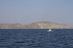Otoño el Mar Negro de la belleza Foto de archivo libre de regalías