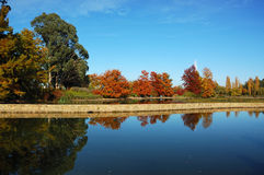 Otoño en Canberra Foto de archivo