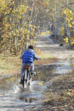 Otoño en el bosque un niño pequeño que monta una bici a través de un charco Fotos de archivo libres de regalías