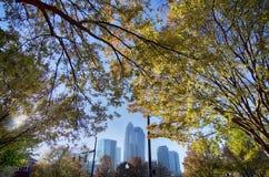 Otoño en el control de calidad de la ciudad de Charlotte de Carolina del Norte fotografía de archivo