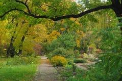 Otoño en el jardín botánico Imágenes de archivo libres de regalías