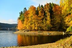 Otoño en el lago Foto de archivo