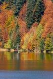 Otoño en el lago Imágenes de archivo libres de regalías