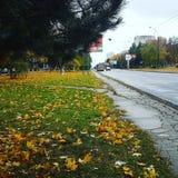 Otoño en el Moldavia fotos de archivo