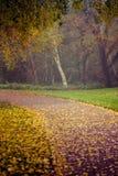 Otoño en el parque de Goldsworth en Woking Foto de archivo