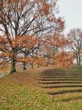 Otoño en el parque, universidad de Aarhus, Dinamarca imagen de archivo