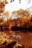 Otoño en el río Fotos de archivo