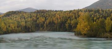 Otoño en el río de Kenai Imagenes de archivo