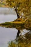 Otoño en el sol de lake Imagenes de archivo