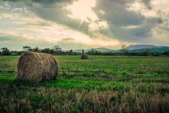 Otoño en el territorio de Primorsky Fotos de archivo libres de regalías