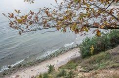 Otoño en Gdynia Foto de archivo