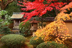 Otoño en Japón Fotografía de archivo libre de regalías