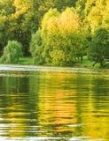 Otoño en la charca, Autumn Park Lago en el parque del otoño Fotografía de archivo
