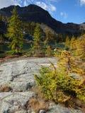 Otoño en la montaña Foto de archivo