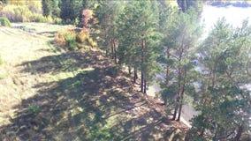 Otoño en la opinión superior del lago del quadcopter almacen de metraje de vídeo