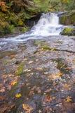 Otoño en las caídas de Alsea Foto de archivo libre de regalías