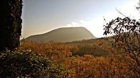 Otoño en las montañas Fotos de archivo libres de regalías