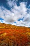 Otoño en las montañas con las nubes de cúmulo Imagen de archivo