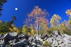Otoño en las montañas rocosas Imagen de archivo libre de regalías