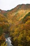 Otoño en montañas Foto de archivo