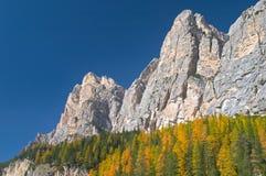 Otoño en montañas de las dolomías Fotografía de archivo libre de regalías