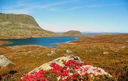 Otoño en Noruega Foto de archivo