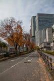 Otoño en Osaka imagenes de archivo