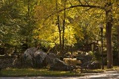 Otoño en parque Fotografía de archivo libre de regalías