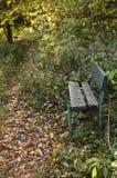 Otoño en parque Foto de archivo libre de regalías