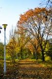 Otoño en parque Imagenes de archivo