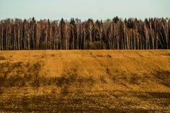 Otoño en Rusia central Foto de archivo