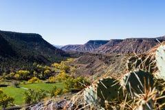 Otoño en Utah meridional Fotos de archivo libres de regalías