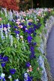 Otoño, flor en el jardín de Butchart, Victoria, isla de Vancouver, británicos Colombia, Canadá Foto de archivo