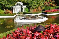 Otoño, flor en el jardín de Butchart, Victoria, isla de Vancouver, británicos Colombia, Canadá Fotos de archivo libres de regalías