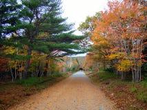 Otoño hermoso en parque nacional del Acadia, Maine Foto de archivo libre de regalías
