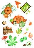Otoño, hojas, calabaza, setas con el ejemplo de la acuarela del wonderfull ilustración del vector